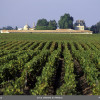 Crus_classes_du_medoc_P_Roy